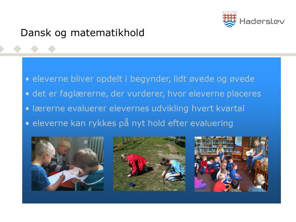 Dansk og matematikhold