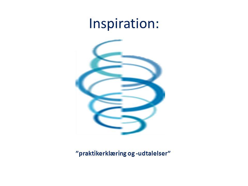 Inspiration: praktikerklæring og -udtalelser
