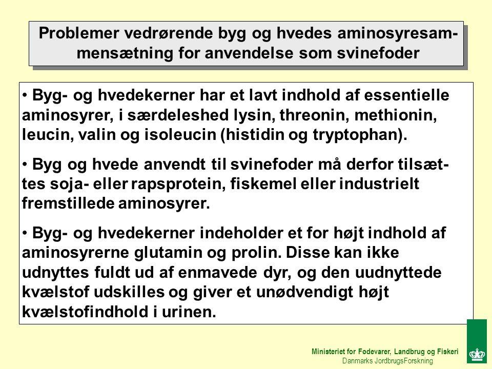 Problemer vedrørende byg og hvedes aminosyresam-