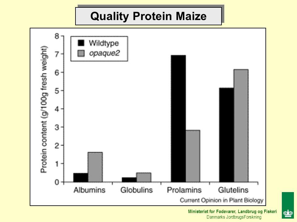 Quality Protein Maize Ministeriet for Fødevarer, Landbrug og Fiskeri