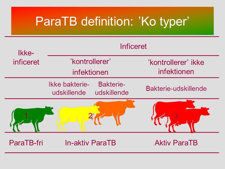ParaTB definition: 'Ko typer'