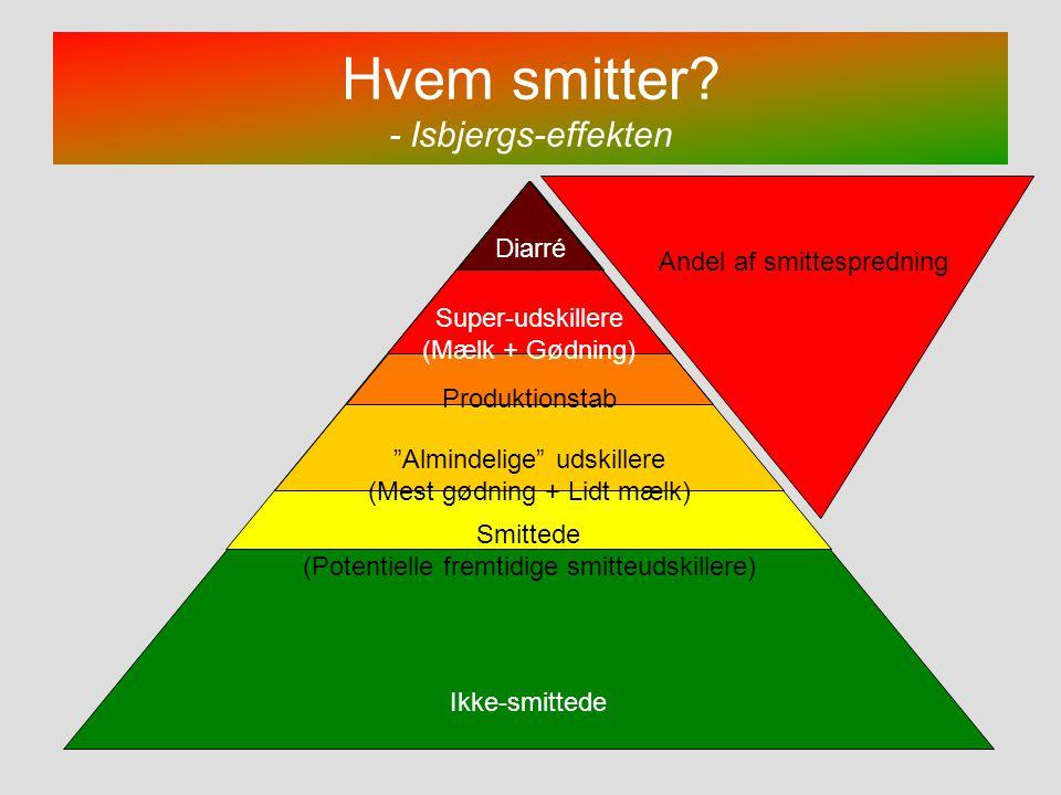 Hvem smitter - Isbjergs-effekten