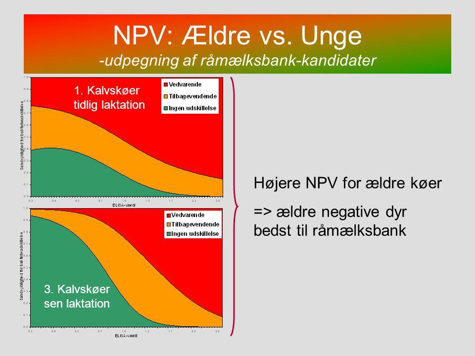 NPV: Ældre vs. Unge -udpegning af råmælksbank-kandidater
