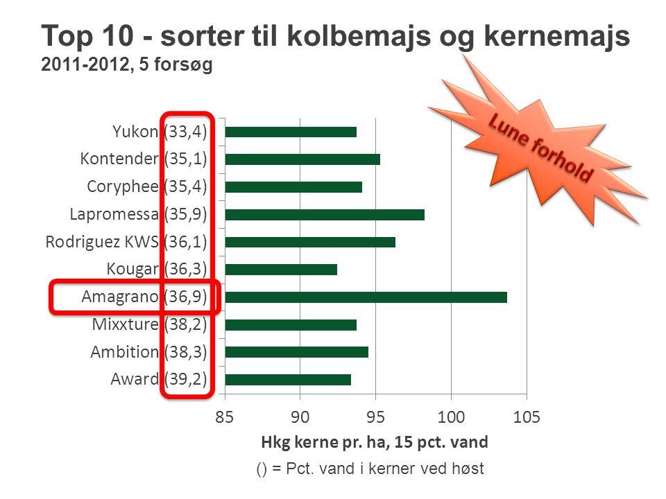 Top 10 - sorter til kolbemajs og kernemajs 2011-2012, 5 forsøg