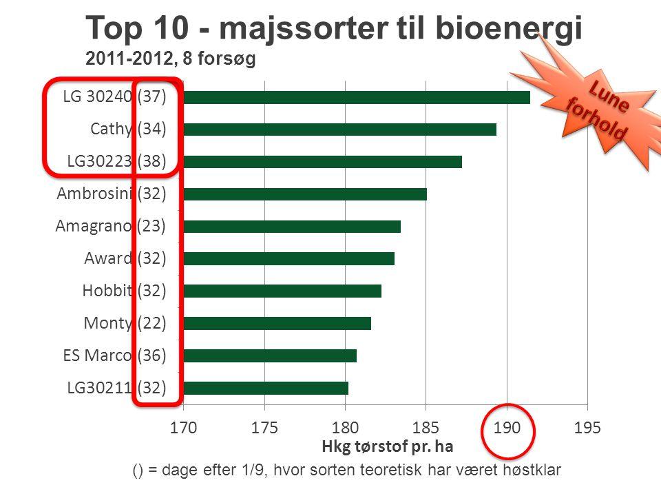 Top 10 - majssorter til bioenergi 2011-2012, 8 forsøg