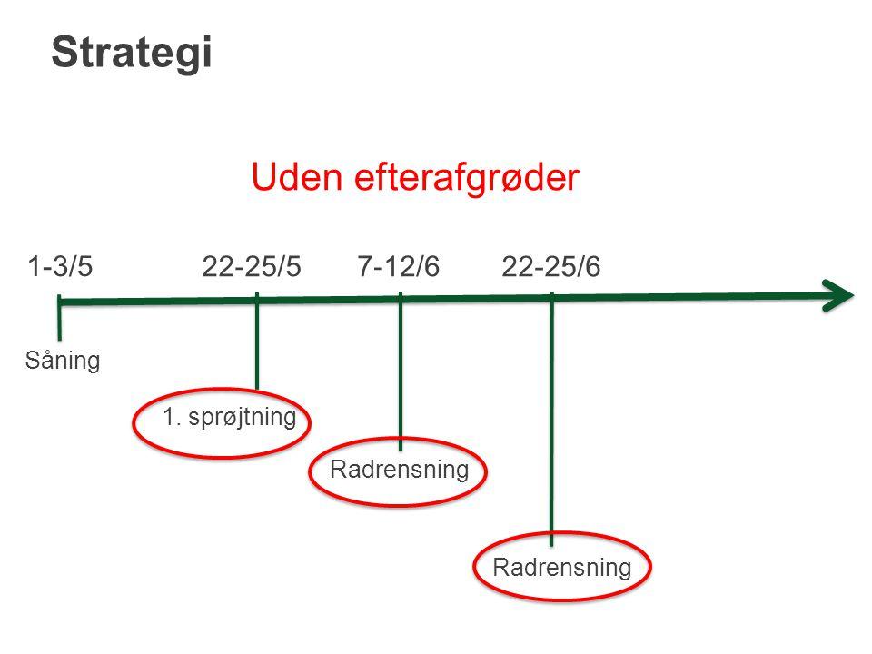 Strategi Uden efterafgrøder 1-3/5 22-25/5 7-12/6 22-25/6 Såning
