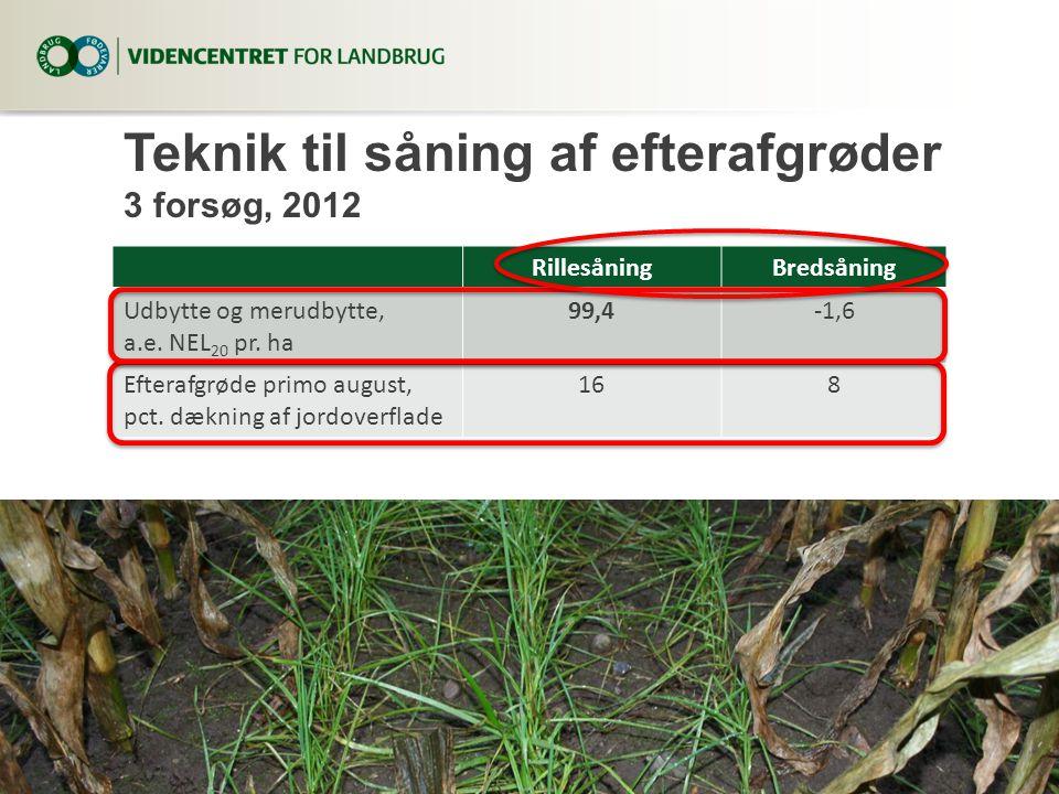 Teknik til såning af efterafgrøder 3 forsøg, 2012
