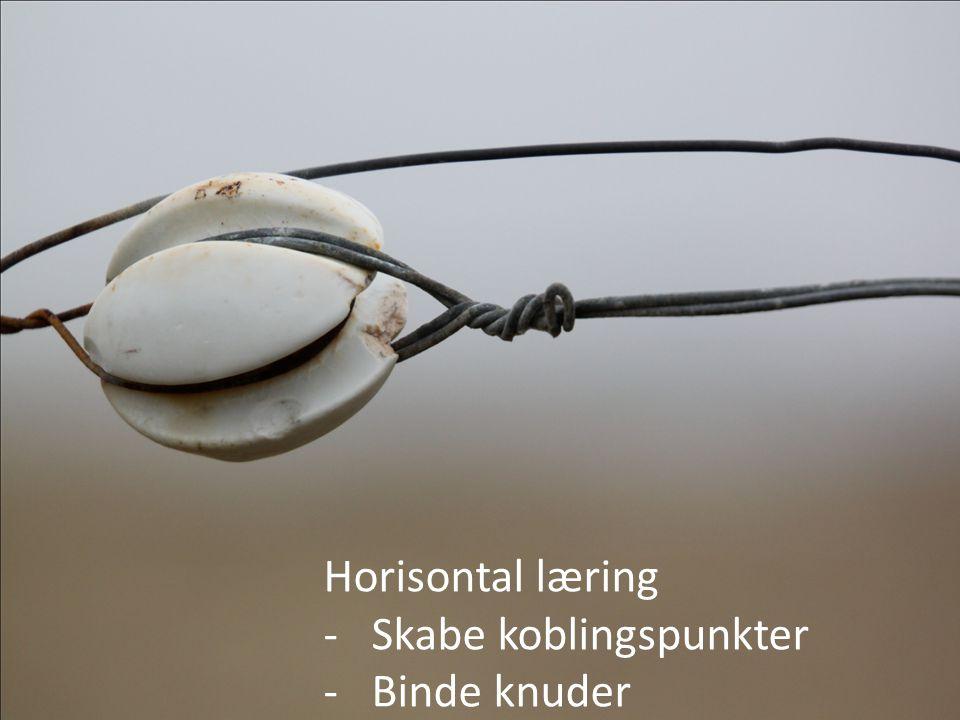 Horisontal læring Skabe koblingspunkter Binde knuder