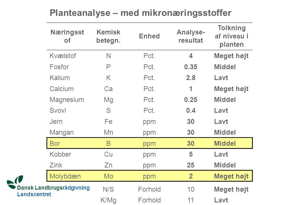 Tolkning af niveau i planten