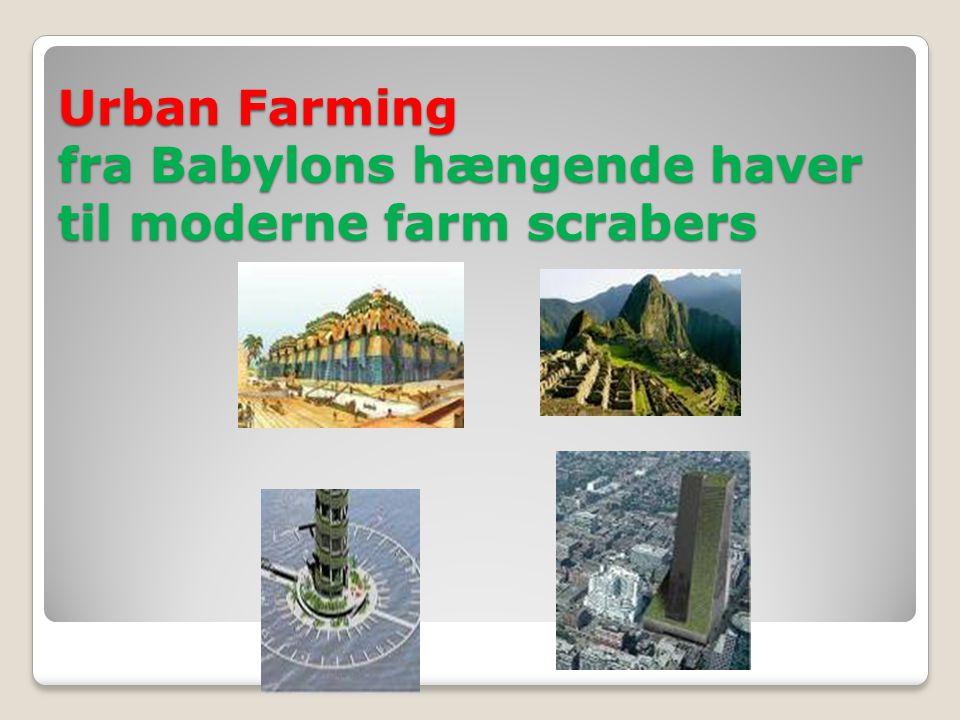 Urban Farming fra Babylons hængende haver til moderne farm scrabers