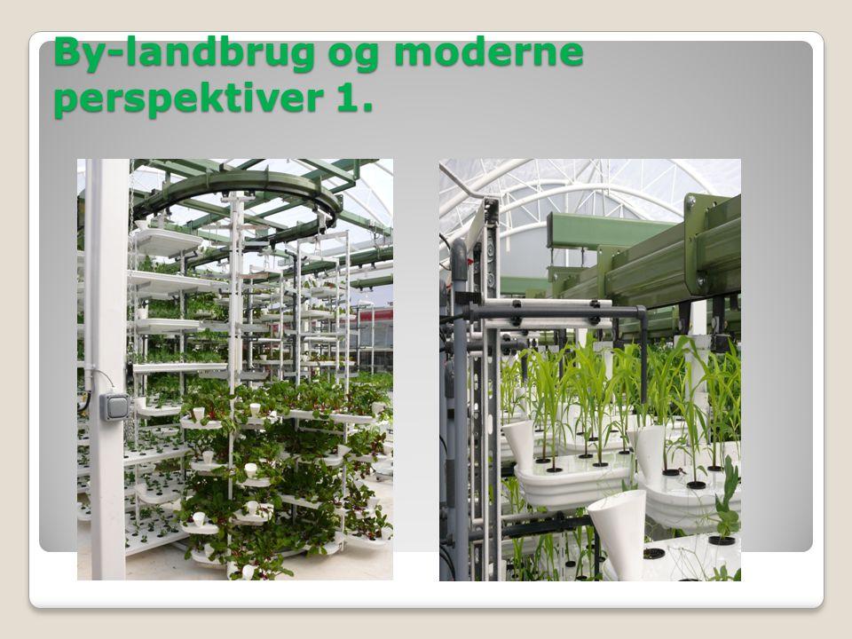 By-landbrug og moderne perspektiver 1.