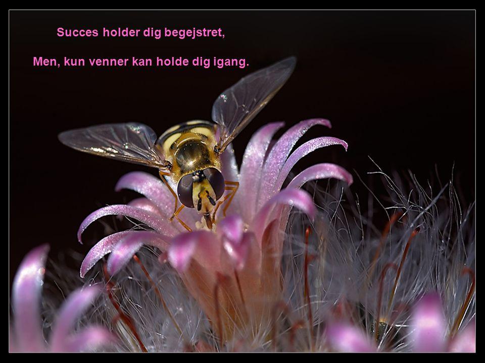 Succes holder dig begejstret, Men, kun venner kan holde dig igang.