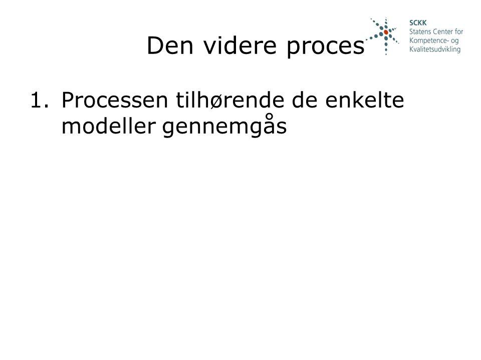 Den videre proces Processen tilhørende de enkelte modeller gennemgås