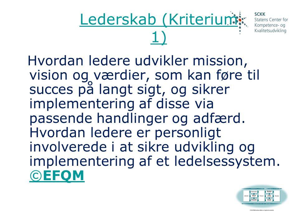 Lederskab (Kriterium 1)