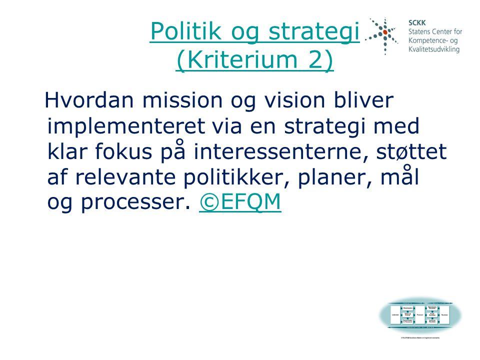 Politik og strategi (Kriterium 2)