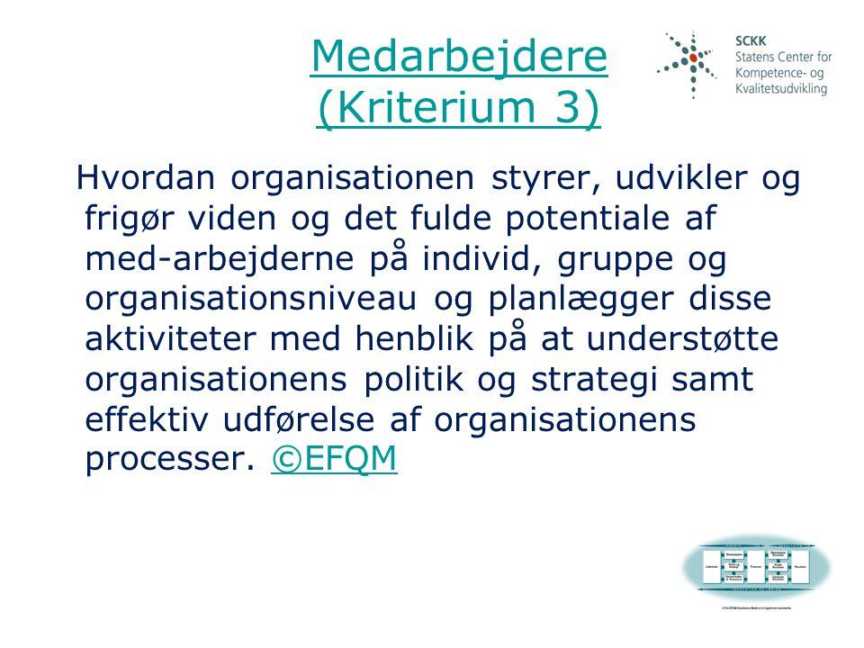 Medarbejdere (Kriterium 3)