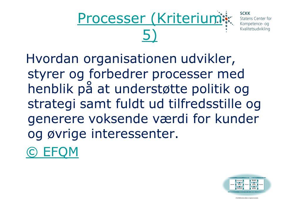 Processer (Kriterium 5)