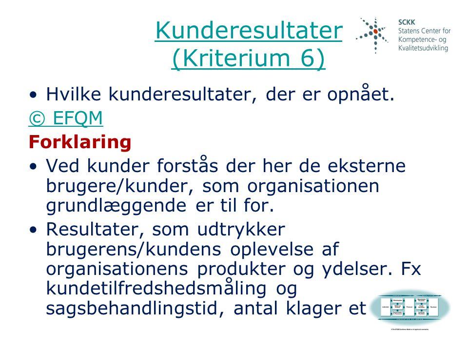 Kunderesultater (Kriterium 6)