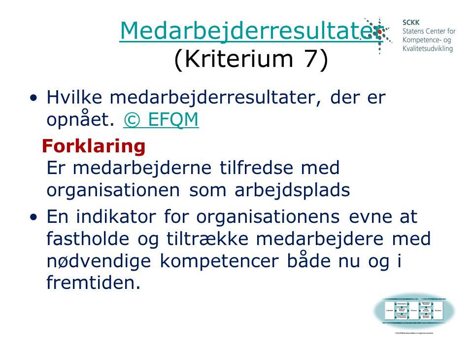 Medarbejderresultater (Kriterium 7)