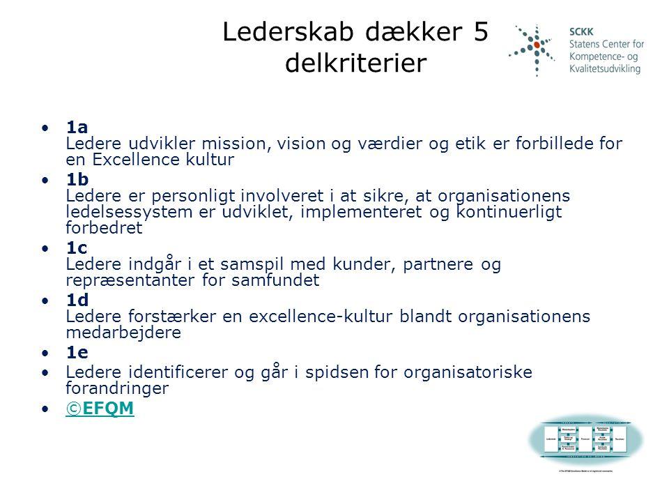 Lederskab dækker 5 delkriterier