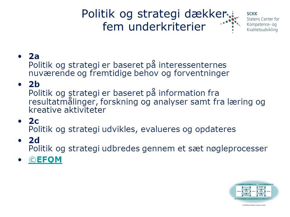 Politik og strategi dækker fem underkriterier