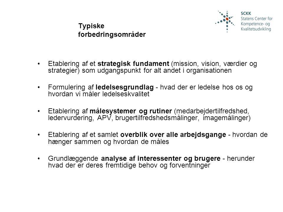 Typiske forbedringsområder