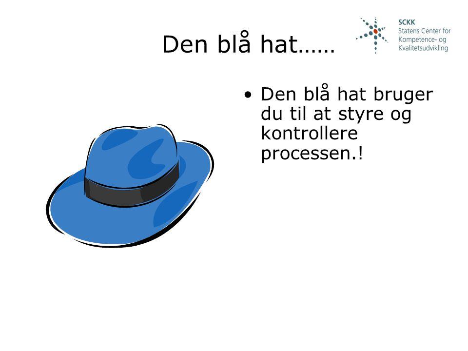 Den blå hat…… Den blå hat bruger du til at styre og kontrollere processen.!