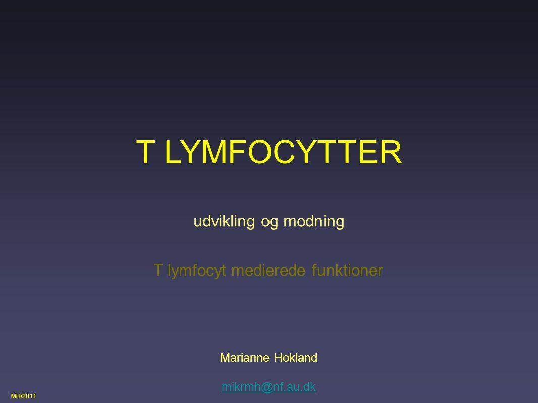 T lymfocyt medierede funktioner