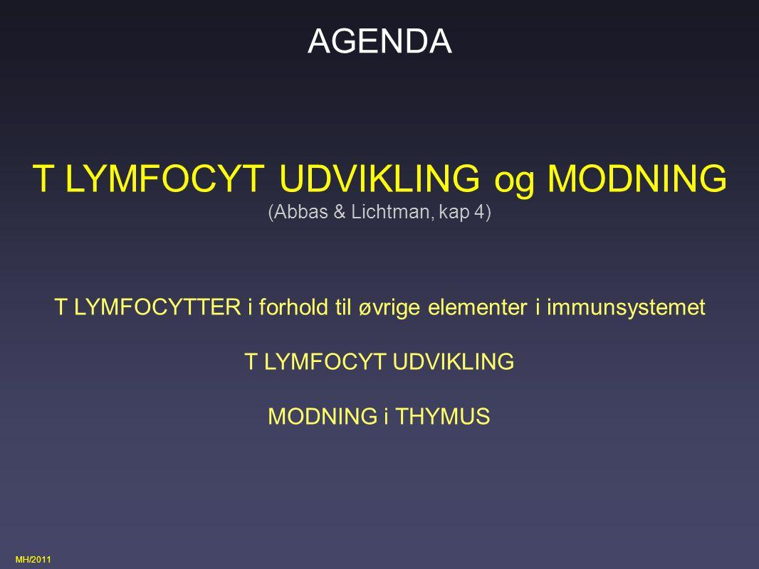 T LYMFOCYT UDVIKLING og MODNING