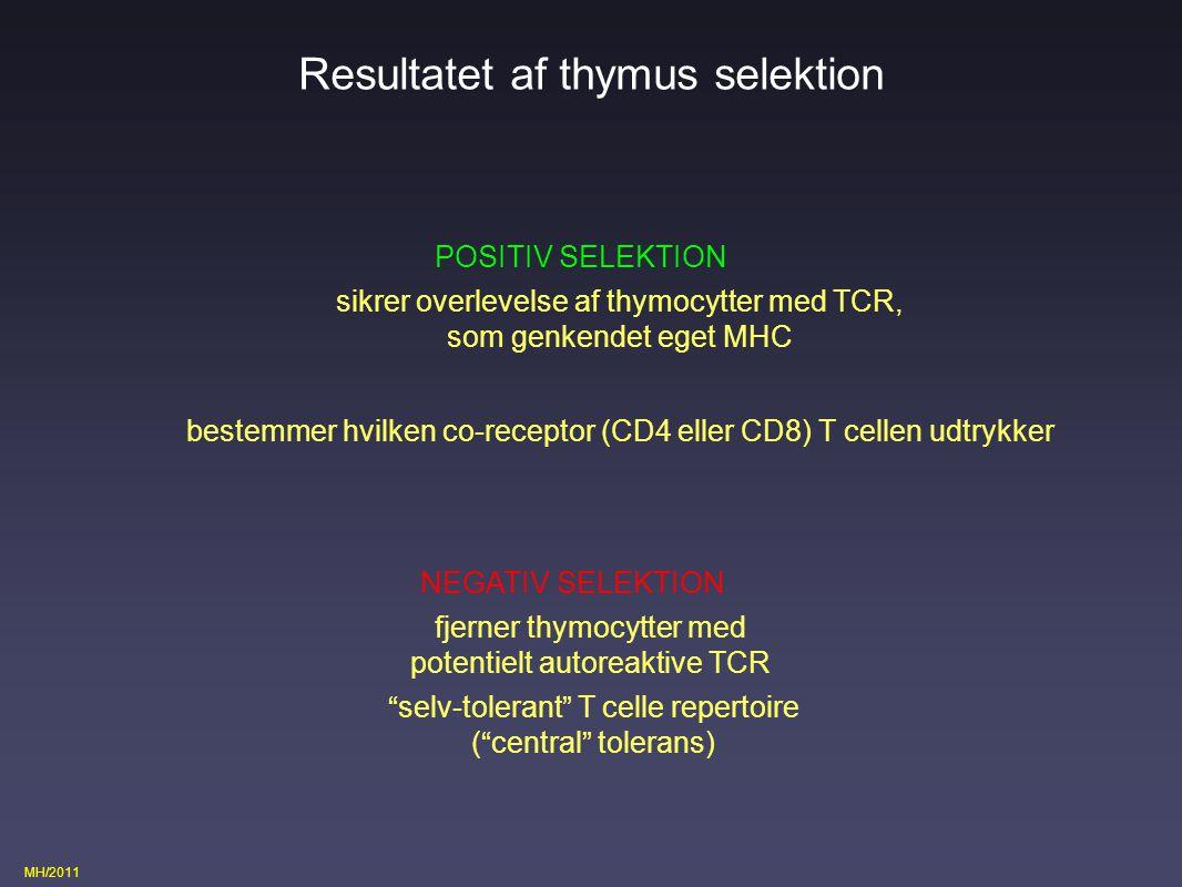 Resultatet af thymus selektion
