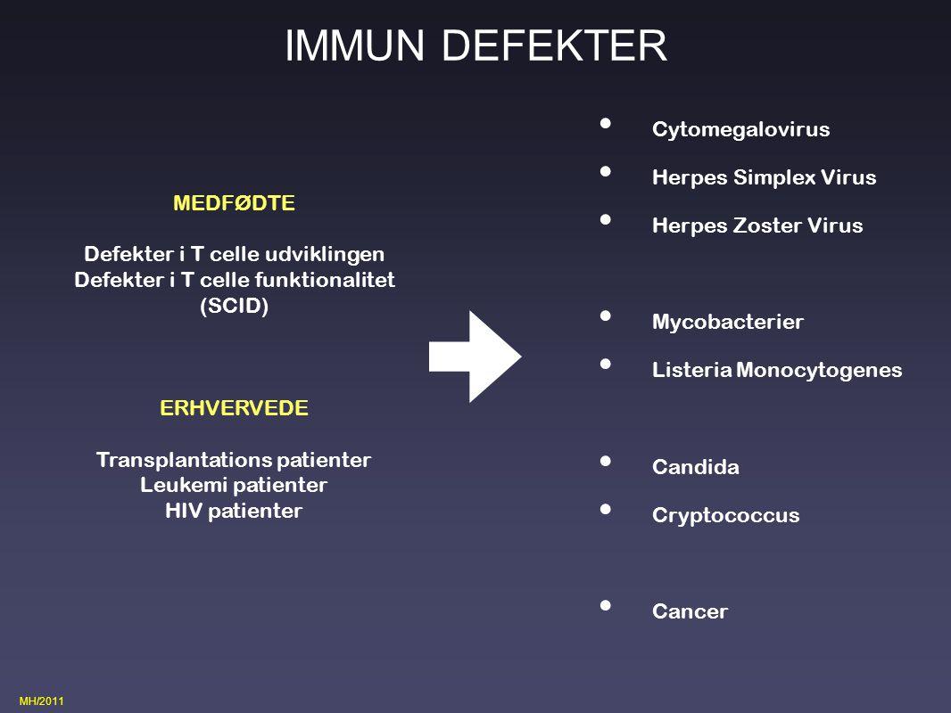 IMMUN DEFEKTER Cytomegalovirus Herpes Simplex Virus