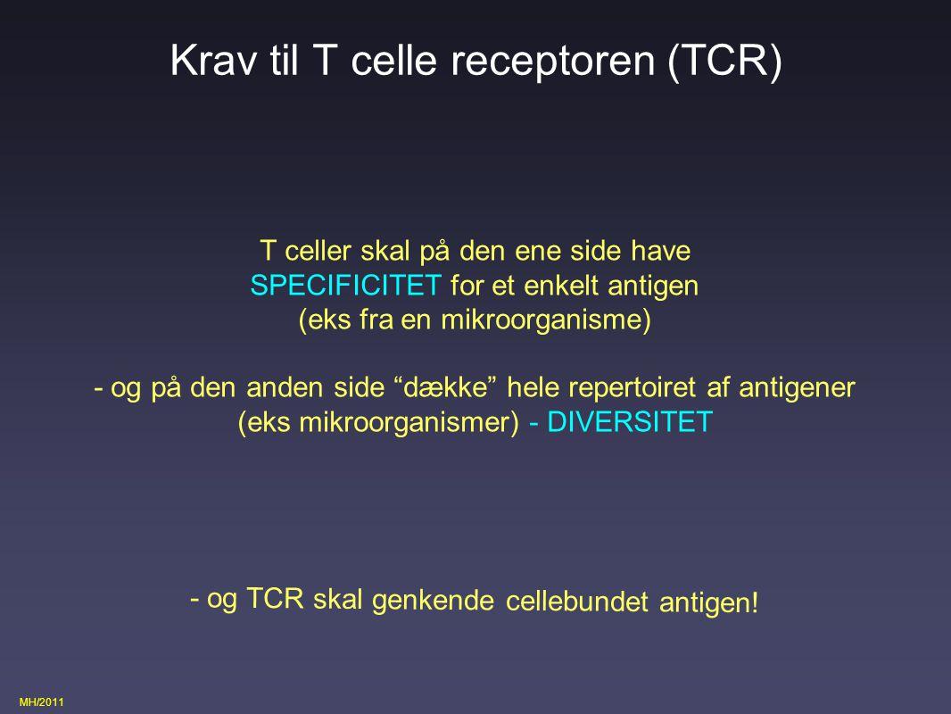 Krav til T celle receptoren (TCR)