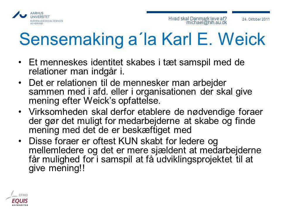 Sensemaking a´la Karl E. Weick