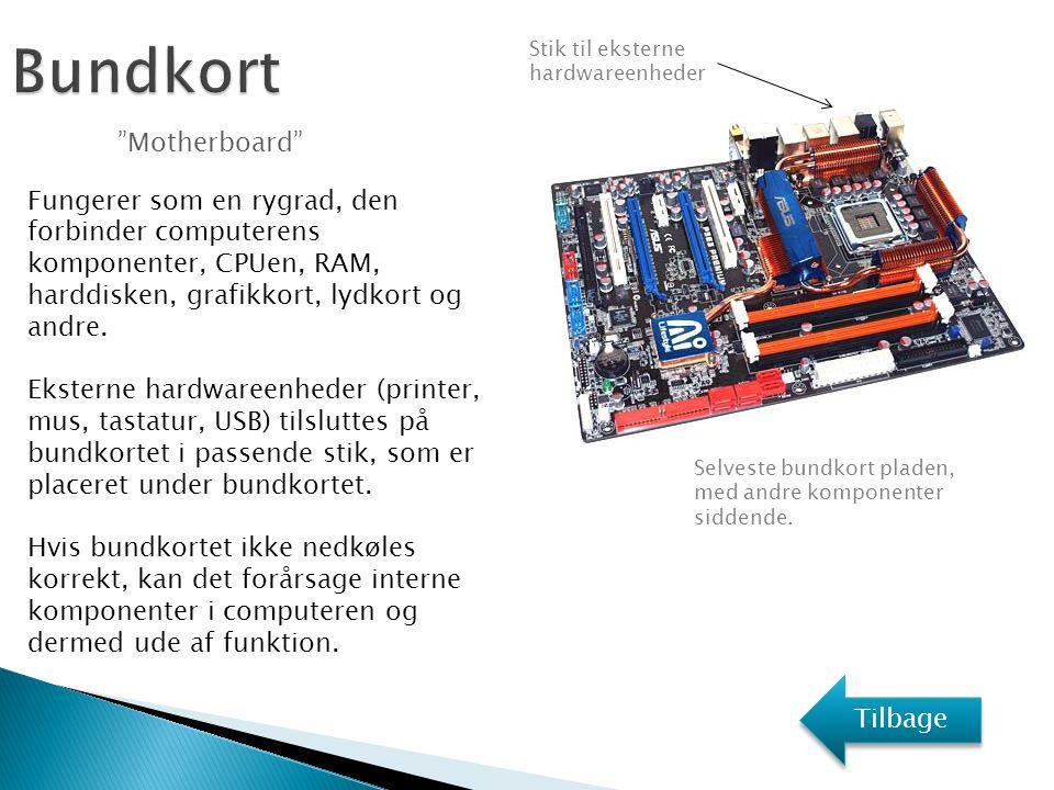 Bundkort Motherboard