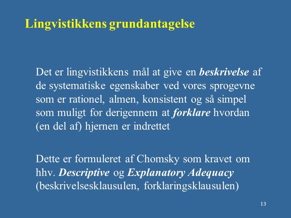 Lingvistikkens grundantagelse