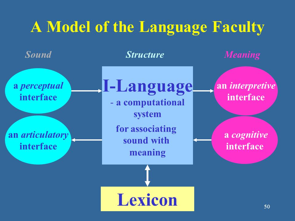 A Model of the Language Faculty