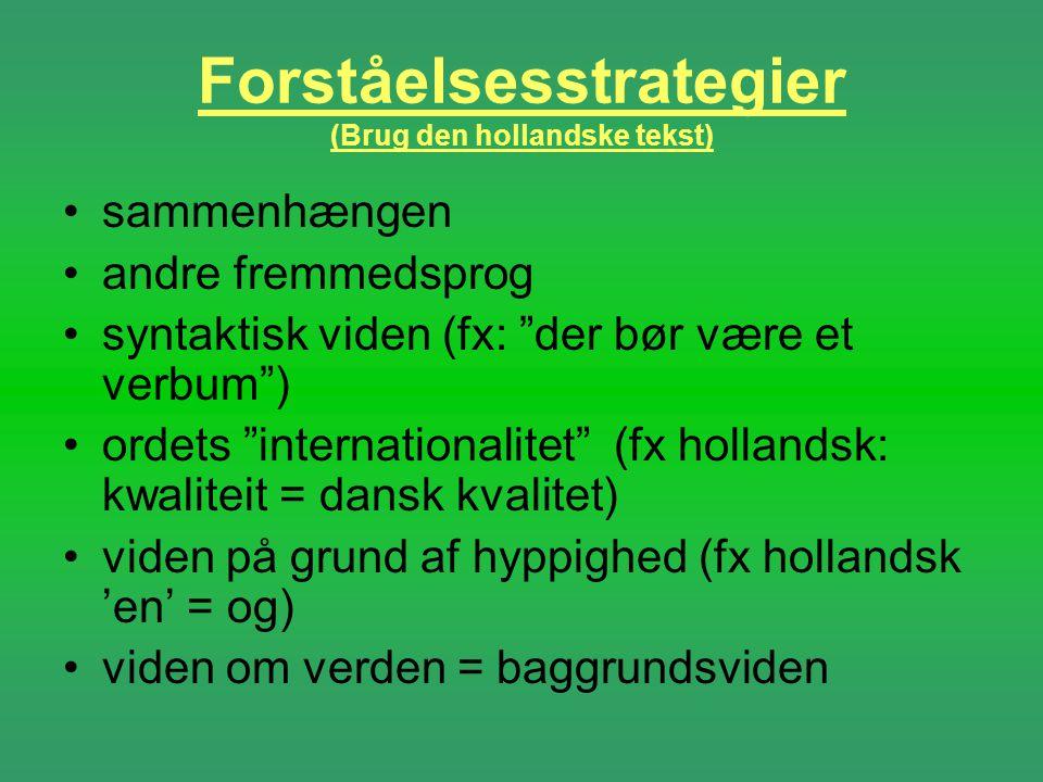 Forståelsesstrategier (Brug den hollandske tekst)