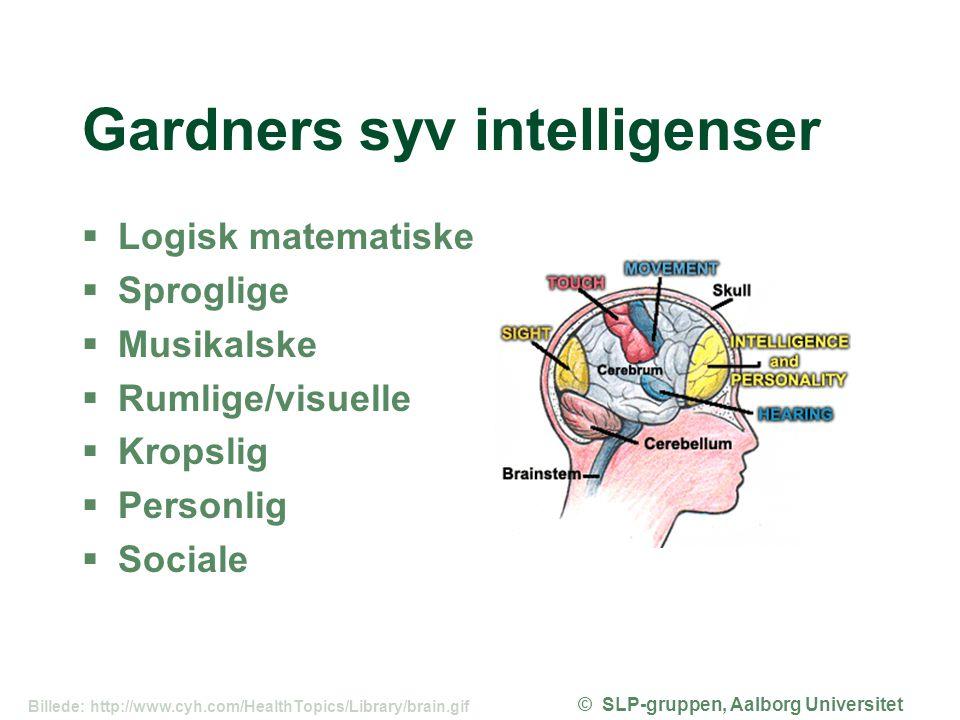 Gardners syv intelligenser