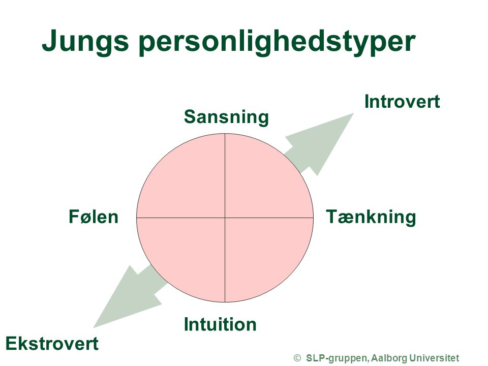 Jungs personlighedstyper