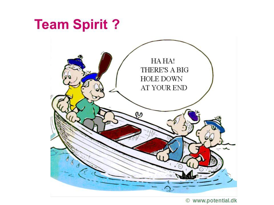 Team Spirit © www.potential.dk