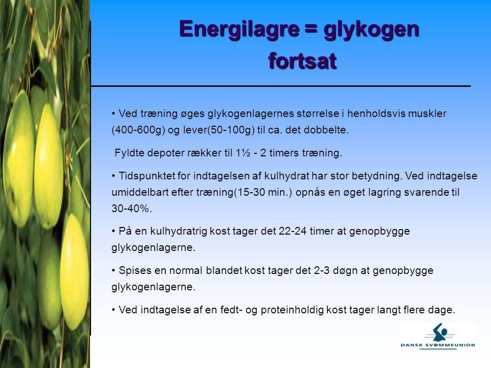 Energilagre = glykogen fortsat