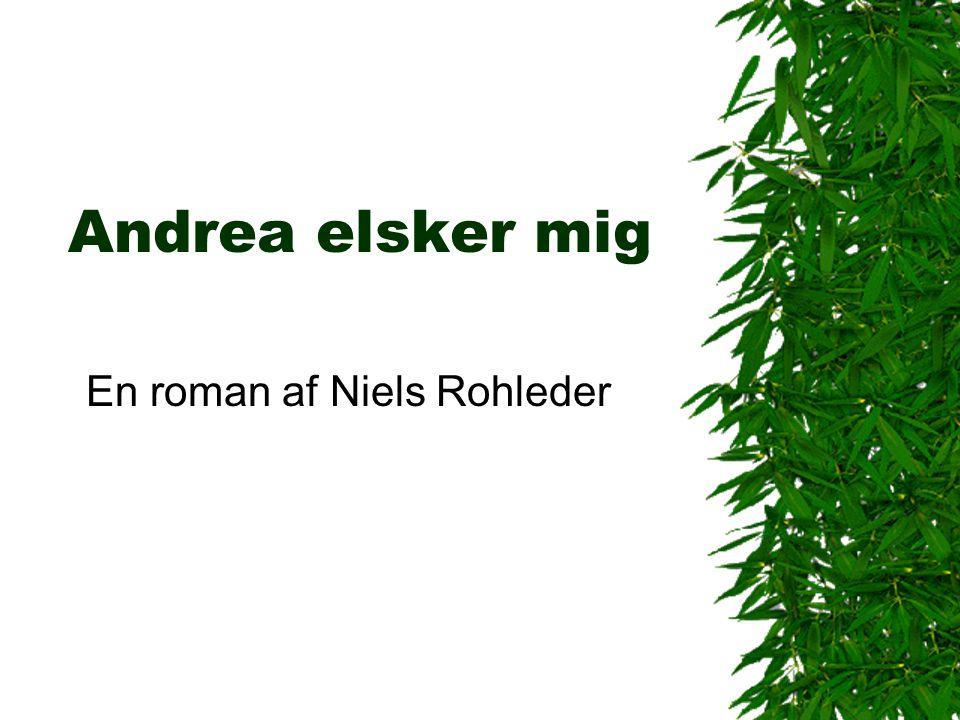 En roman af Niels Rohleder