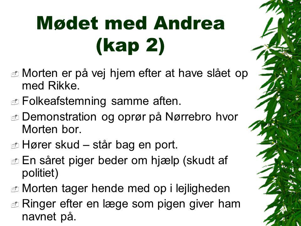 Mødet med Andrea (kap 2) Morten er på vej hjem efter at have slået op med Rikke. Folkeafstemning samme aften.