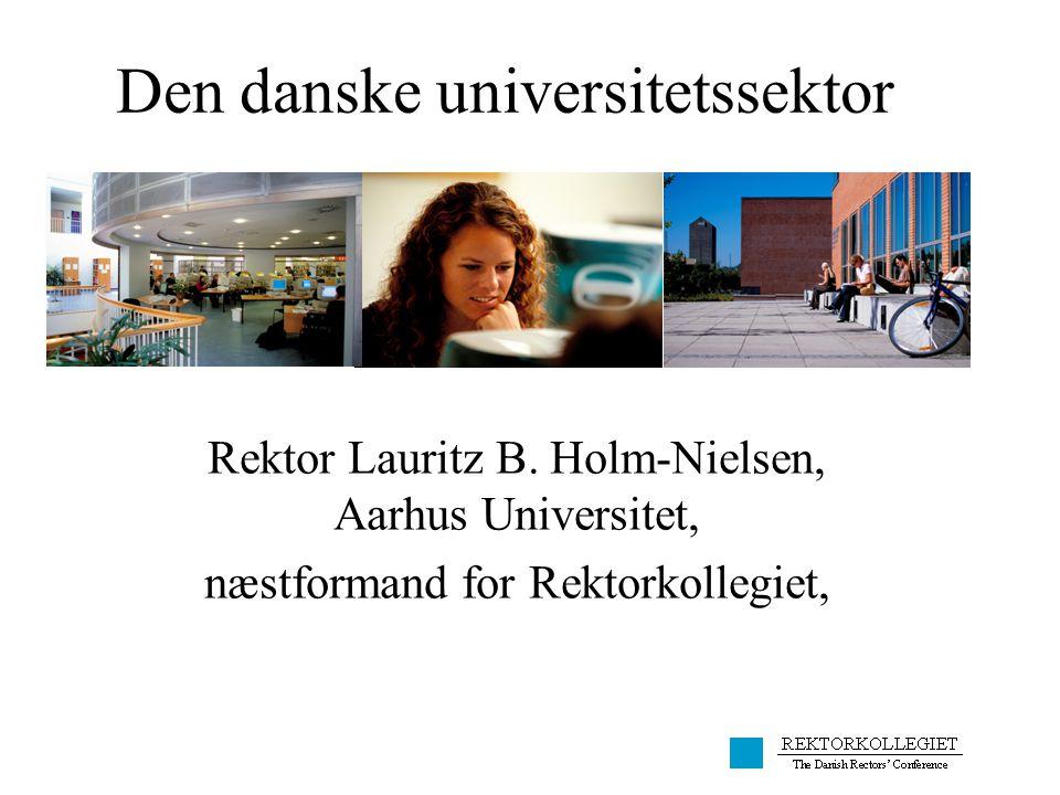 Den danske universitetssektor