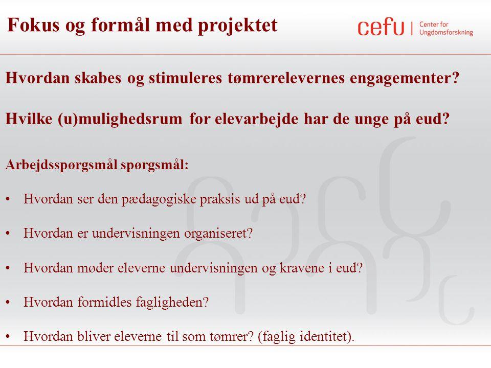 Fokus og formål med projektet