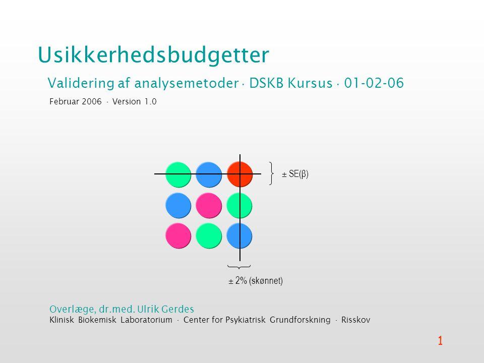 Usikkerhedsbudgetter
