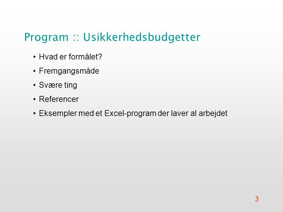 Program :: Usikkerhedsbudgetter