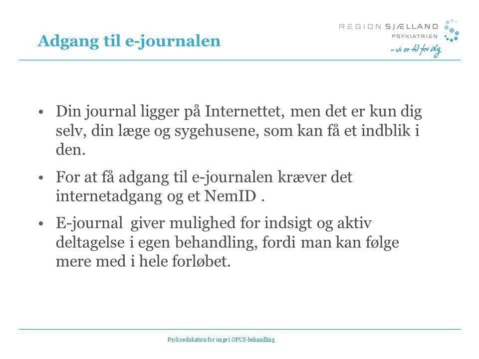 Adgang til e-journalen