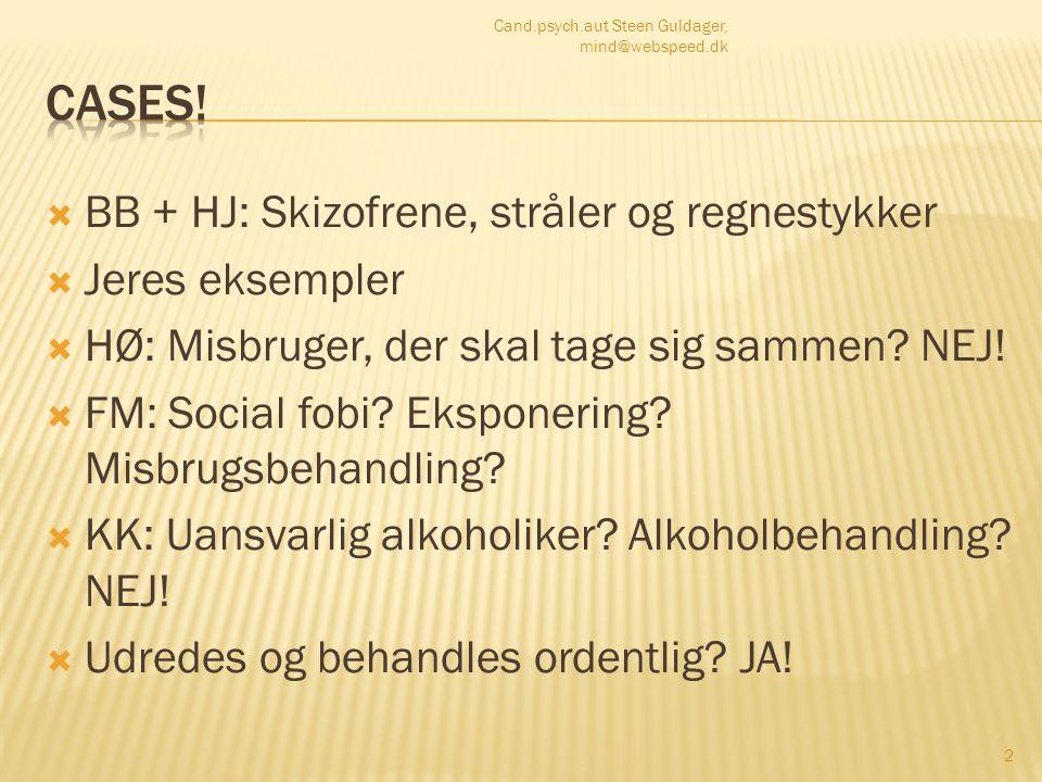 Cases! BB + HJ: Skizofrene, stråler og regnestykker Jeres eksempler