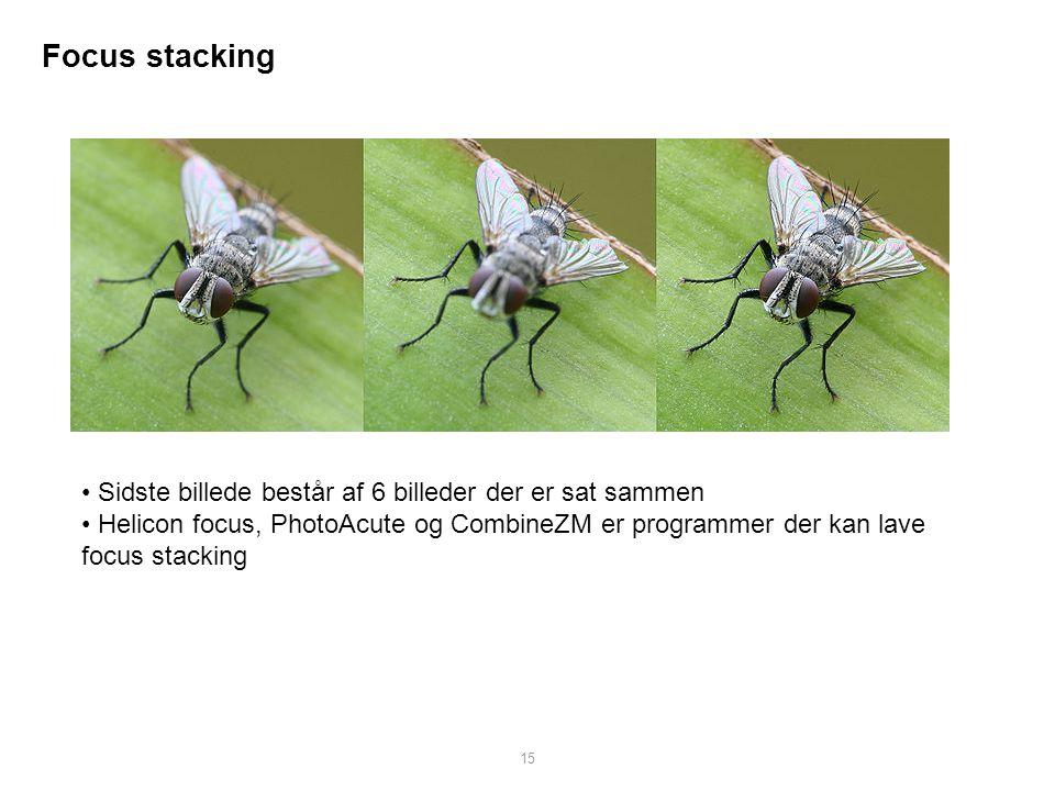 Focus stacking Sidste billede består af 6 billeder der er sat sammen